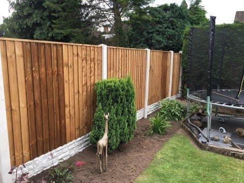 garden-fencing-1-50%